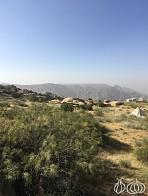 Rummana Camp at Dana Nature Reserve